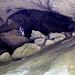 Die grösste der Höhlen lädt zu Spiel & Spass.