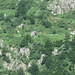Zoom sul Bivacco Lidesch 1570 mt.