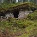 im Grand Risoux, dem grössten zusammenhängenden Wald der Schweiz
