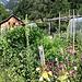 Kräutergarten bei Garadur