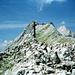 Die Hohe Fürleg dominiert im Westen das Gipfelpanorama