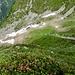 Tiefblick auf den Weg der sich zur Alpe di Doia herunterschlängelt.