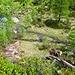 Artus ist bereits unten am Ausfluss des Lago Alzasca und löscht seinen Durst.