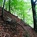 Bosco dell Erbi. Auf der Suche nach dem alten Weg zur Alp Tramossa. Hier finde ich einen gesprayten Strich auf einem Stein. Rechts davon schwach erkennbar die Wegspur.