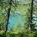 Verde scuro, verde più chiaro, azzurro, una sinfonia di colori.