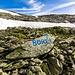 Ecco la roccia che indica la direzione da prendere del Piz Borel