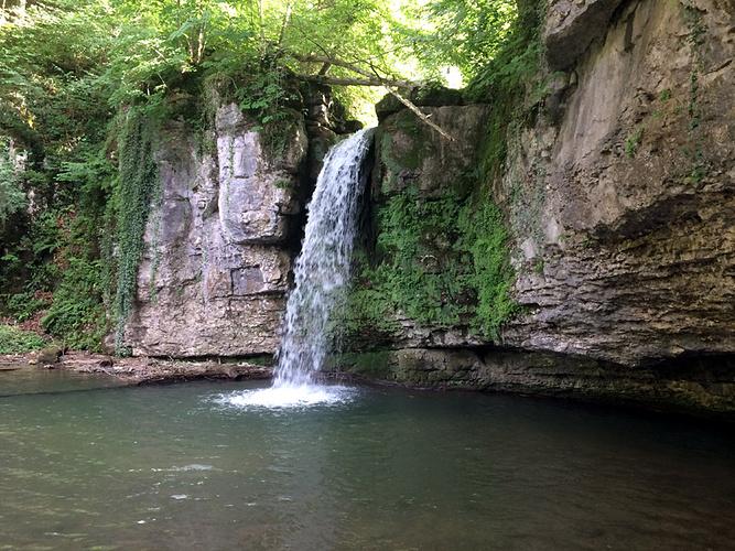 Ein Bild, das Wasser, Natur, Baum, draußen enthält.  Automatisch generierte Beschreibung