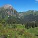 Alpenrosen vor der Bergszenerie im Oberseetal