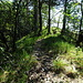 Blick zurück auf den Abstiegsweg zu den Sigbachfällen