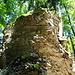 überhängende Felsen und oben wachsen Bäume