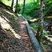 und der Wanderweg entlang des Bachs