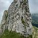 Steiler Abstieg zum Weiterweg zum Wyss Rössli (T6 lll)