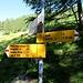 Bivio prima dell' Alpe di Sfii Q1610 (l'altimetria sul cartello indica quella dell'Alpe)