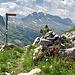 Die Furgge ist erreicht und grüsst mit Alpenrosen. Rechts geht's zum Gipfel des Schiberg. Im Hintergrund Rederten- und Mutteristock.