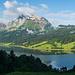 Kurz nach dem Start der Tour: Wägitalersee und Fluebrig garniert mit Kuh