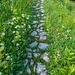 Ein liebevoll gestalteter Weg führt zur Bockmattlihütte