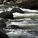 Les eaux vertes du Doubs