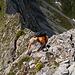 [u Stijn] beim weiteren Abstieg im zuvor erwähnten Steilstück