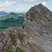 Rückblick über den Abstieg von der Vorderen Rossflue. Eine andere Gruppe hat den Gipfel erreicht.