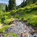 Typische Landschaft beim Aufstieg zur Boarnlacke.