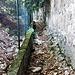 Lo stretto passaggio fra la proprietà Medici - Frascarolo e quella di Villa Castiglioni che permette di evitare un buon tratto di asfalto.