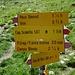 man beachte die Wegzeit von hier zum Pass Diesrut und nach Vrin:<br />ab dem Pass Diesrut nach Vrin müssten es demnach 2 1/4 h sein und vergleiche dies dann mit der Zeitangabe für Vrin auf dem Pass Diesrut<br />[http://www.hikr.org/gallery/photo2689200.html?post_id=133659 hier] kann schon mal vorausgesprungen werden