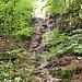 Ein neuer Tag beginnt. Ich marschierte weiter, vorbei an vielen Wasserstellen die trocken waren, obwohl es vor wenigen Tagen noch geregnet hat. An diesem Wasserfall fällt im Moment gar nix.