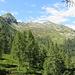 Alpe Canaa & Co.