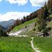 Zurück bei der Alp Purcher.