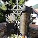 <b>In memoria delle vittime della valanga del 23.2.1999.</b>