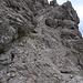 Steiler Schrofenhang im Abstieg ins Birgerkar.
