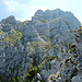 Abstiegsgelände von der Säulingwiese zum Apostel-Grat