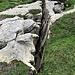 """Uno dei """"crepacci"""" che caratterizzano il Monte Teggiolo."""