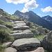 L'ultimo tratto che conduce all'Alpe Testanera 2260 mt: una stupenda mulattiera ben gradinata.
