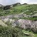 Tante rocce montonate dovute all'azione erosiva di antichi ghiacciai.