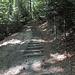 Treppe hinab in die Wolfsschlucht