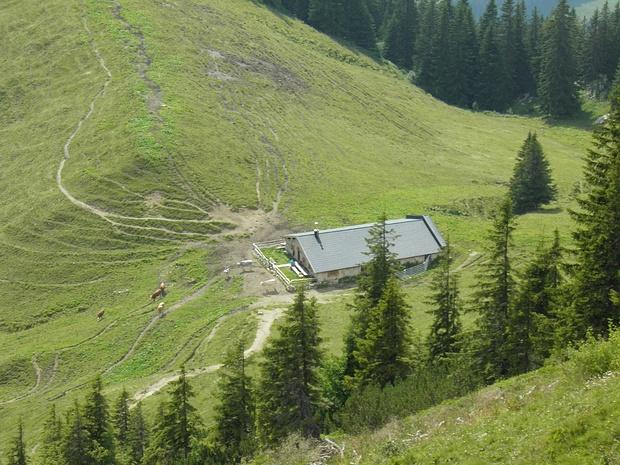 Obere Wallenburgalm