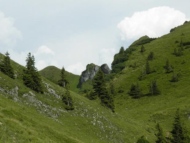 schönes grünes Gelände- typisch Bayerische Voralpen