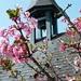Fünfländerblick - Lourdeskapelle