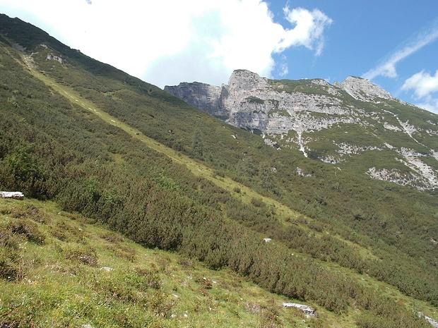 Links oben kann man zwischen Latschen einen Steig erkennen.