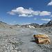 Gletscherlandschaft.