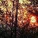 Sonnenaufgang an der Autobahn bei Eiken