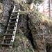 Bei dieser Leiter trifft man wieder auf einen gelb markierten Wanderweg der von der Tössscheidi heraufkommt.