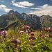 Genialer Blick vom Schmalhorn Richtung Wildengundkopf.