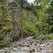 Die Gießenbachschlucht. Der Weg führt am Bachbett entlang