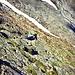 Klettersteig Tierbergli (K3)