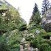 Sotto la roccia centrale del giardino. Qui si trovano le Campanule zoysi, il simbolo del Parco Nazionale del Triglav e le Stelle alpine.
