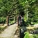 Riattraversiamo l'Isonzo per ritornare sul sentiero.