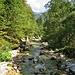 L'Isonzo qui è ancora un torrente.