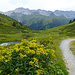 Etwas oberhalb Alp digl Chants, Rückblick